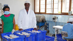 Tanzania Groundnuts Deep Processing Industry
